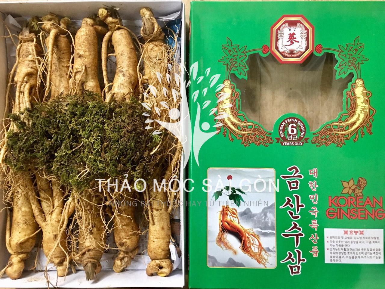 Sâm tươi Hàn Quốc 3-4-5-6 củ 1kg giá bao nhiêu tại TP HCM